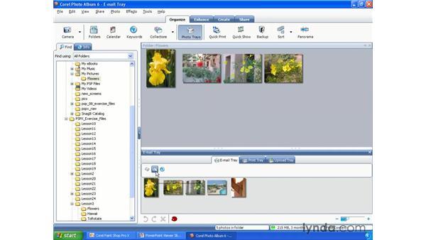 Using Photo Trays: Paint Shop Pro X Essential Training