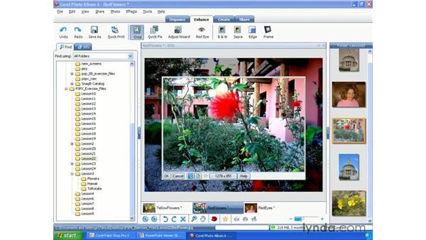 Cropping photos: Paint Shop Pro X Essential Training