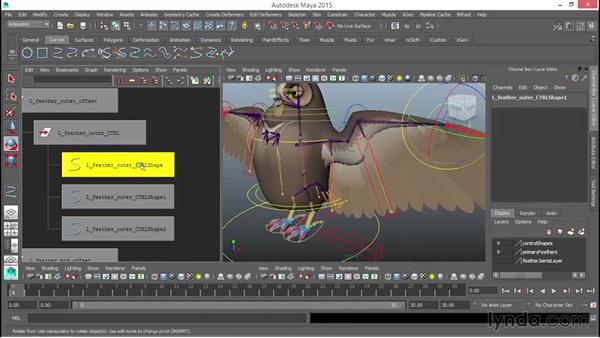 Primary feathers overview: Rigging a Winged Animal in Maya