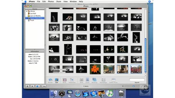 Importing differences: iMovie HD + iDVD 5 Essential Training