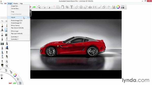 Exploring the Image menu: SketchBook Pro 7 Essential Training