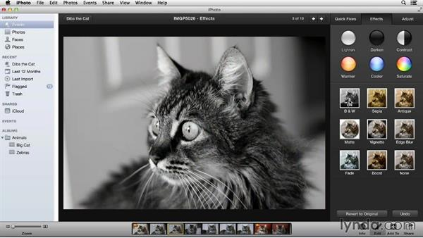 The Effects tab: Up and Running with iPhoto