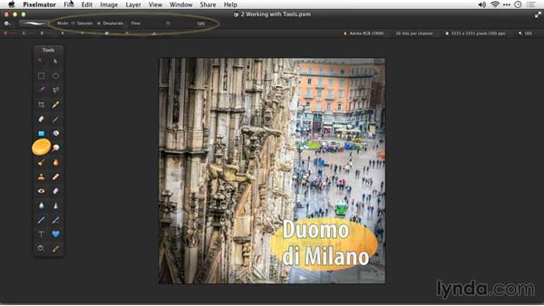 Selecting and modifying a tool: Up and Running with Pixelmator