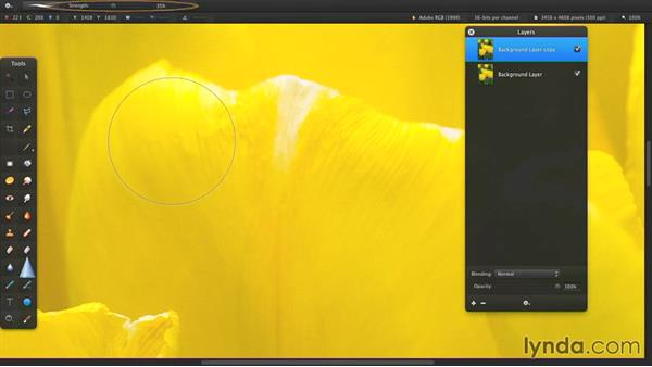 Blur or sharpen areas of an image: Up and Running with Pixelmator