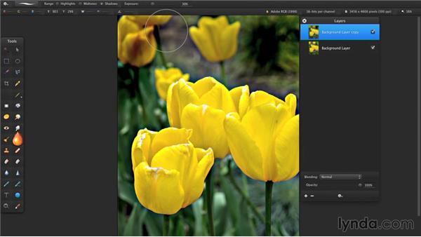 Darken or lighten areas of an image: Up and Running with Pixelmator