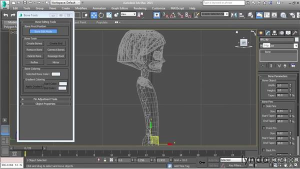 Drawing the spine: Character Rigging in 3ds Max