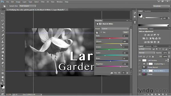 Unifying the color palette: Motion Graphics for Video Editors: Creating Backgrounds