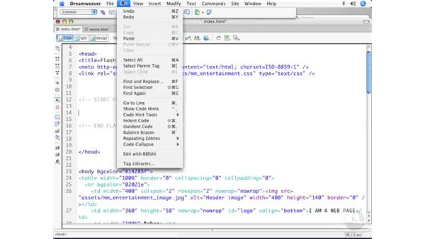 Implementing the Flash 8 detection scripts: Flash User Experience Best Practices