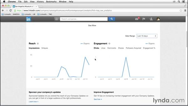 Analyzing updates and campaigns: LinkedIn for Business