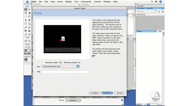 The Flash 8 Video Import Wizard: Flash User Experience Best Practices