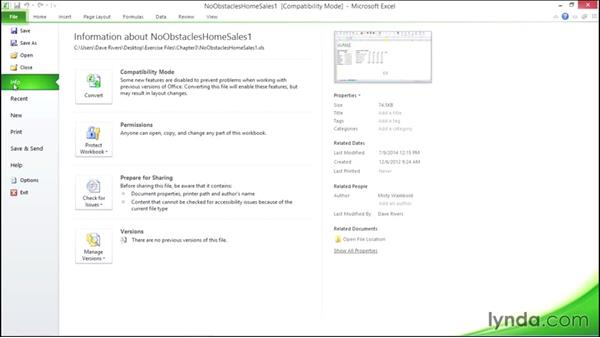 Understanding file formats and compatibility: Migrating from Office 2007 to Office 2010