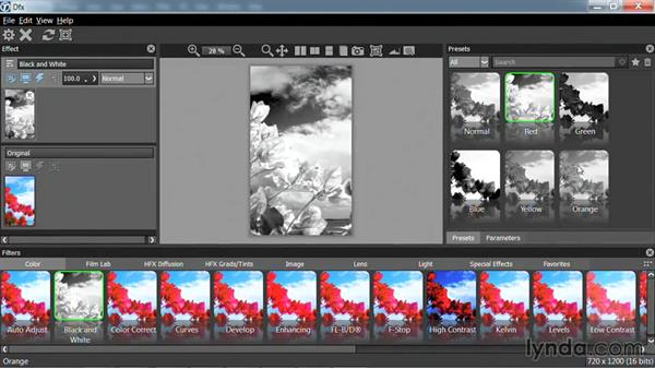Running as a photo plugin: Up and Running with Tiffen Dfx