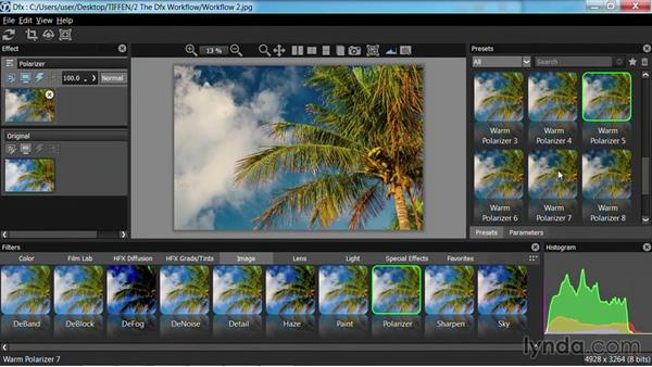 Working with filter presets: Up and Running with Tiffen Dfx