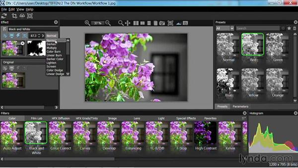 Working with layers and blending modes: Up and Running with Tiffen Dfx