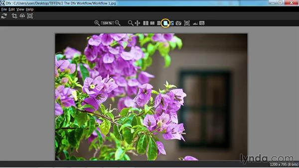 Comparing images: Up and Running with Tiffen Dfx