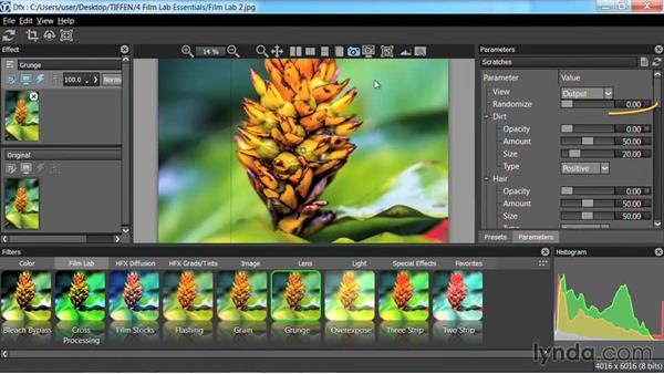 Flashing, Grain, and Overexpose: Up and Running with Tiffen Dfx
