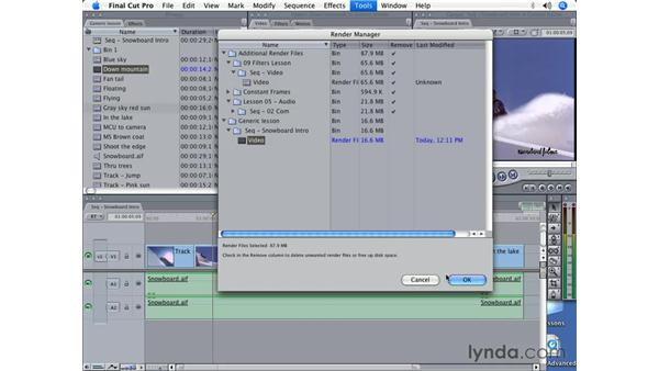 Working with render files: Final Cut Pro 5 Beyond the Basics