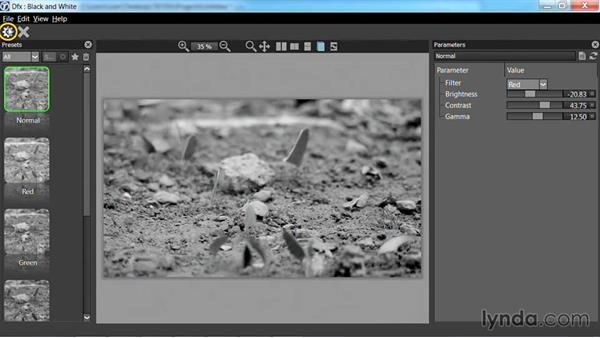 Creating a black-and-white image: Up and Running with Tiffen Dfx