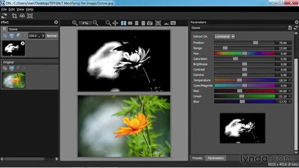 Developing an image with the Zone System and sharpening: Up and Running with Tiffen Dfx