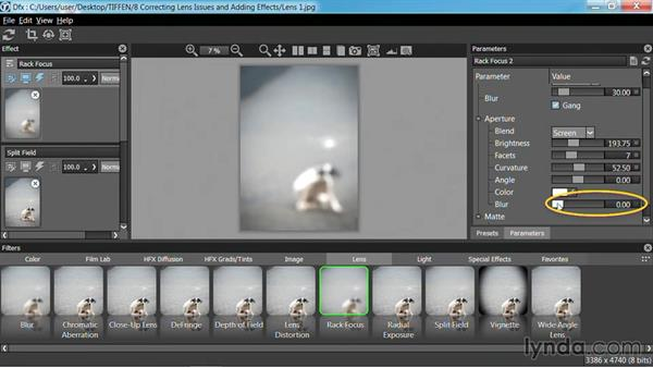 Adding blur: Up and Running with Tiffen Dfx