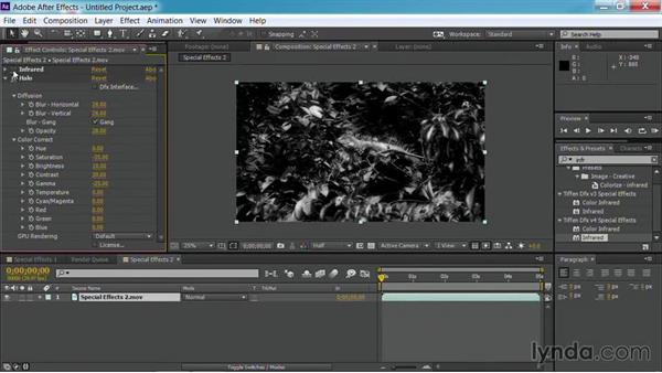 Shooting infrared: Up and Running with Tiffen Dfx