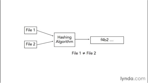 Hashing algorithms: Computer Forensics Essential Training