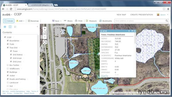 Creating pop-ups and new visualizations: GIS on the Web