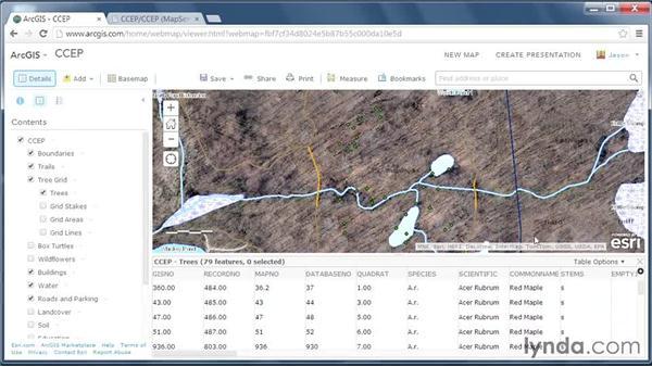 Data analysis through filters: GIS on the Web
