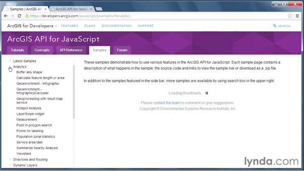 Esri API options: GIS on the Web