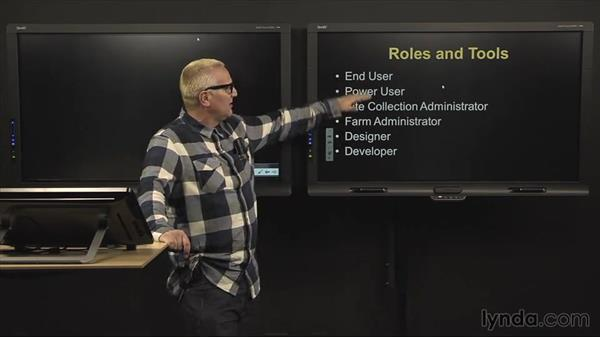 Roles and tools: SharePoint 2010: Foundation and Server