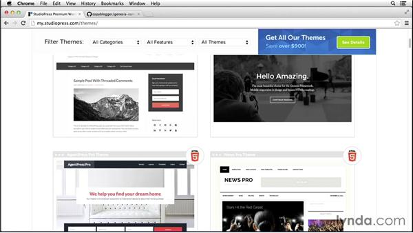Selecting a child theme to customize: Customizing Themes with Genesis for WordPress