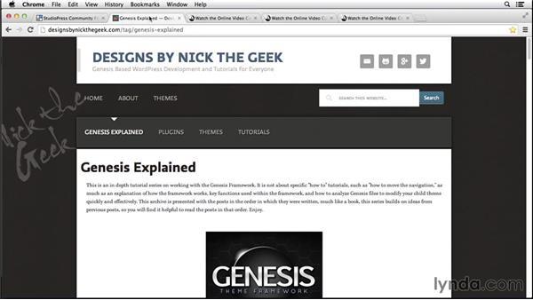 Next steps: Customizing Themes with Genesis for WordPress