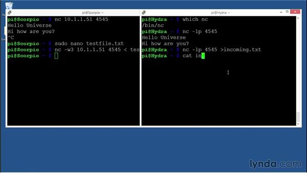 Using Netcat for file transfers: Practical Cybersecurity