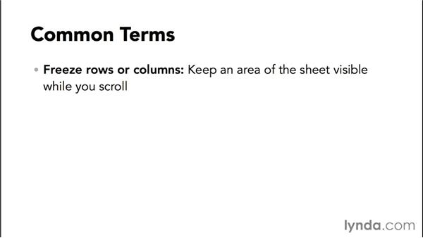 Understanding common Google Sheets terminology: Google Sheets Essential Training