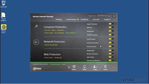 Exploring the Norton Internet Security main window: Norton Internet Security Essential Training
