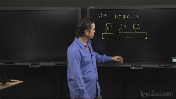 Understanding collision domains: Introduction to Networking
