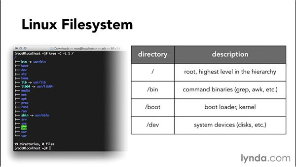 A quick look at the Linux file system: Up and Running with CentOS Linux