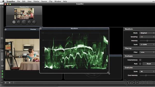 Additional scope options with ScopeBox: Premiere Pro Guru: Video Finishing Techniques