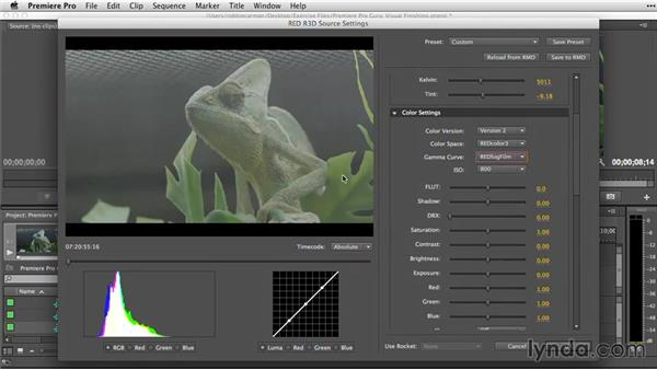 Raw and log formats: Premiere Pro Guru: Video Finishing Techniques