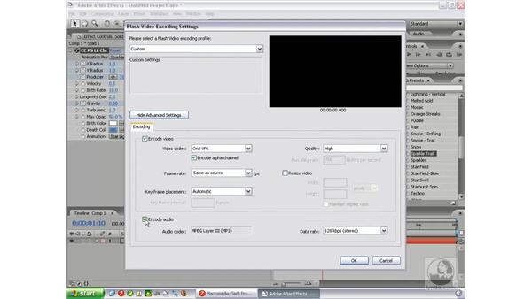 Flash video (FLV) export: After Effects 7 New Features