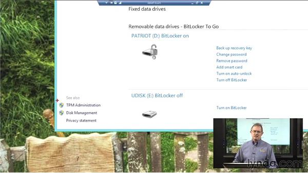 BitLocker To Go: Windows 8 Networking and Security