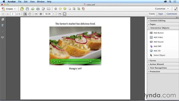 Adding new media: Adapting a Print Layout for Digital Publishing