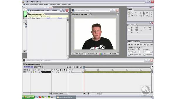 Keying footage using After Effects: Flash Professional 8 Video Integration