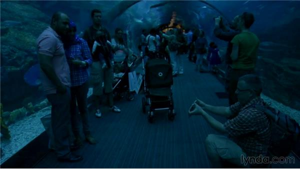 Shop and shoot: Madinat and Dubai Mall: The Traveling Photographer: Dubai