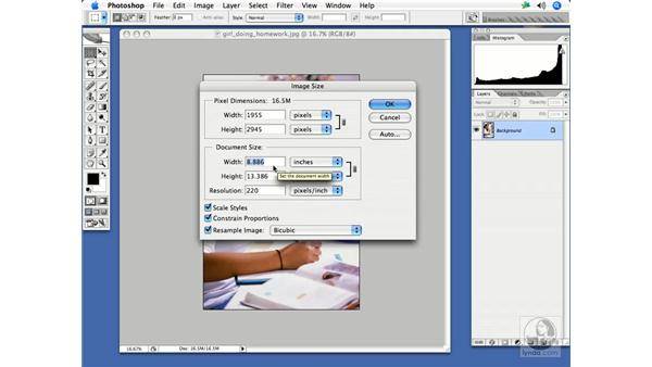 Resizing and resampling: InDesign CS2 Print Project Workflow