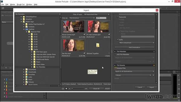 Batch renaming files on ingest: EPK Editing Workflows 01: Ingest to Assembly Edit