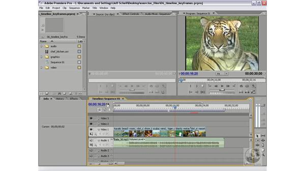 Specifying frames by entering timecode delimiters: Premiere Pro 2 New Features