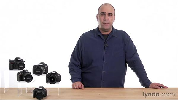 Shutter-Priority mode: Up and Running with the Canon 6D