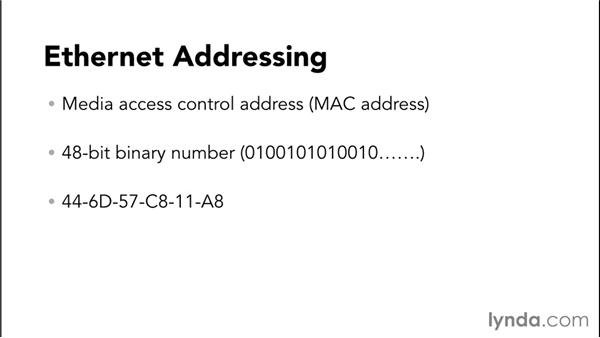 Using Ethernet: Setting Up a Small-Office Network