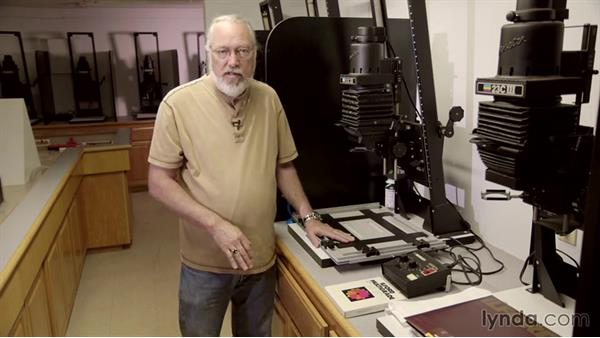 Setting up the enlarger: Shooting and Processing Black-and-White Film